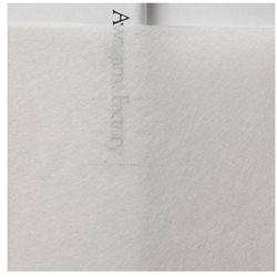 Японская бумага Sekishu White SH-27 для консервации 25 листов, 35 г/м, 64х97 см, 4 необрезанных края
