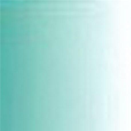Краска Pro-color МЯТА 30мл. (прозрачный)