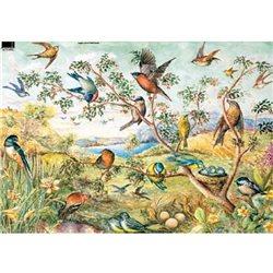Декупажная карта (50х70 см), тема Пейзаж с птицами