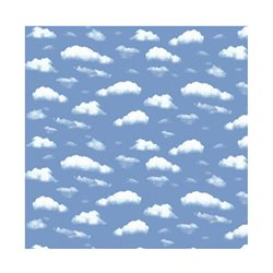 "Бумага для Scrapbooking, фотокартон, 30,5х30,5см, 300гр/м2, ""Облака"""