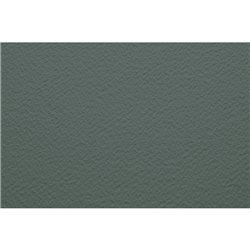 Бумага для пастели 50х65 Tiziano 160 г /серый холодный с ворсом