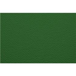 Бумага для пастели 50х65 Tiziano 160 г /фисташковый
