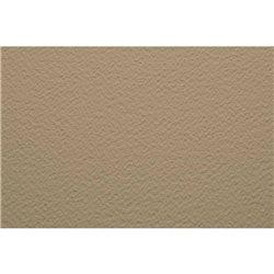 Бумага для пастели 70х100 Tiziano 160 г /сахара
