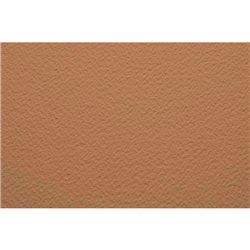 Бумага для пастели 70х100 Tiziano 160 г /песочный