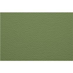 Бумага для пастели 70х100 Tiziano 160 г /салатовый теплый