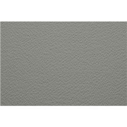 Бумага для пастели 70х100 Tiziano 160 г /серый светлый