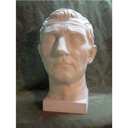 Голова Августа