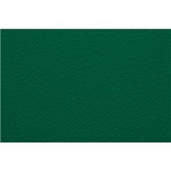 Бумага для пастели А4 Tiziano 160 г /ярко-зеленый
