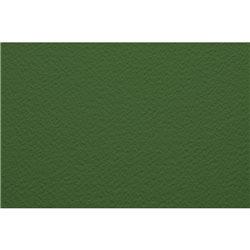 Бумага для пастели А4 Tiziano 160 г /фисташковый