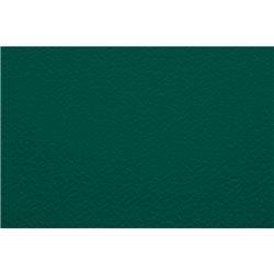 Бумага для пастели 50х65 Tiziano 160 г /серо-зеленый