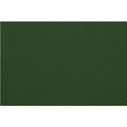 Бумага для пастели 50х65 Tiziano 160 г /оливковый