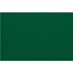 Бумага для пастели 50х65 Tiziano 160 г /зеленый темный