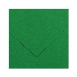 30.Картон цв. Vivaldi 50x65 пл.240гр/м Зеленый мох