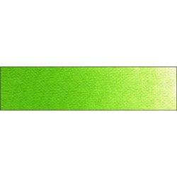 Жёлто - зелёный/краска масл. худож. Old Holland