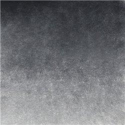 Нейтрально-черная акварель Белые ночи кювета 2,5 мл