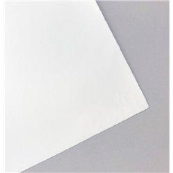 Бумага для печати Magnani LITHO 50*70 310 г/м